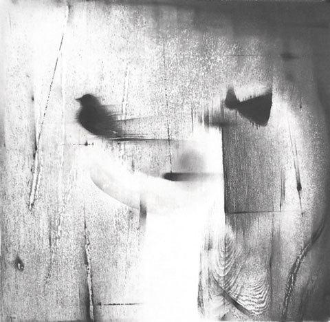 lullaby-girl-35×36.jpg